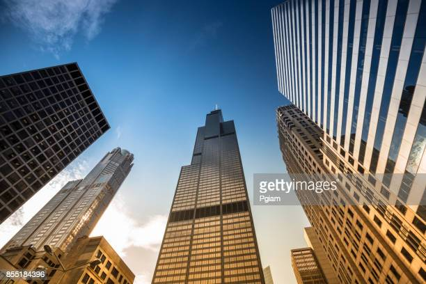 willis tower in chicago illinois usa - willis tower stock photos and pictures