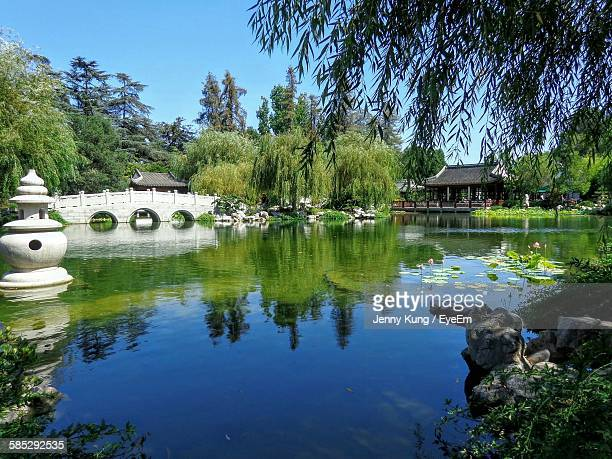Willow Trees By Pond Against Sky In Chinese Garden