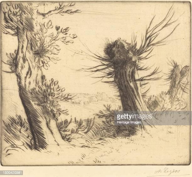 Willows . Artist Alphonse Legros.