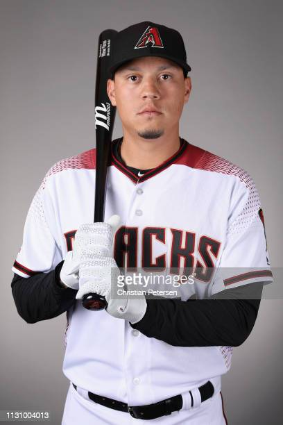 Wilmer Flores of the Arizona Diamondbacks poses for a portrait during photo day at Salt River Fields at Talking Stick on February 20 2019 in...