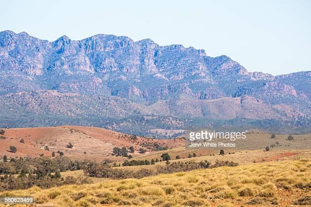Wilpena Pound. Flinders Ranges
