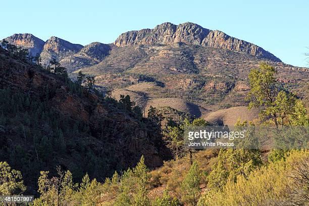 Wilpena Pound. Flinders Ranges. South Australia.