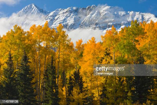 wilson peak dusted in snow near telluride colorado - mt wilson colorado stock photos and pictures