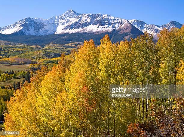 wilson peak san juan mt. fall colorado - mt wilson colorado stock photos and pictures