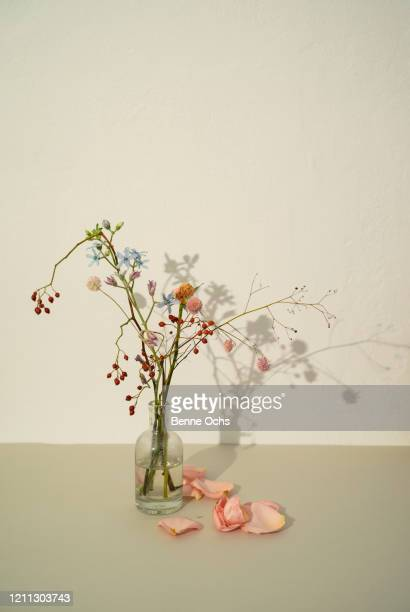 wilting flower arrangement in vase - beige background stock pictures, royalty-free photos & images