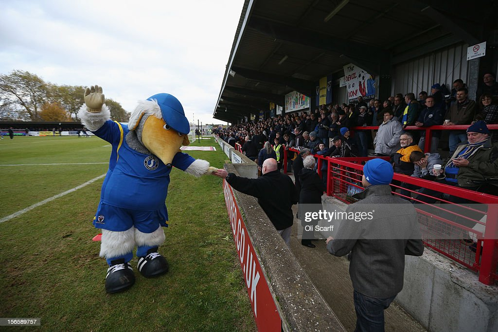 Wimbledon's Womble mascot 'Haydon' entertains the crowds before the npower League Two match between AFC Wimbledon and Aldershot Town at the Cherry Red Records Stadium on November 17, 2012 in Kingston upon Thames, England. on December 1, 2012 League Two AFC Wimbledon, the football club formed in 2002 by supporters unhappy with their club's relocation to Milton Keynes, will play an FA Cup tie against League One Milton Keynes Dons, which Wimbledon F.C. controversially became.