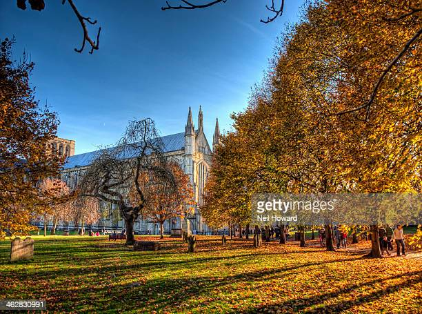 winchester cathedral on a late autumn afternoon - winchester hampshire stock photos and pictures