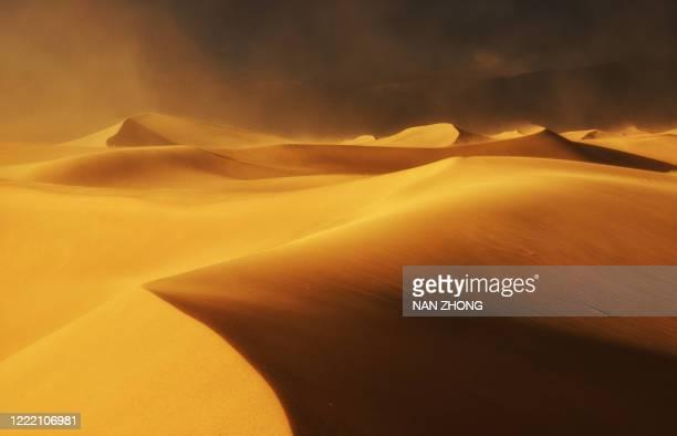 wind dance on sand dunes - dune de sable photos et images de collection