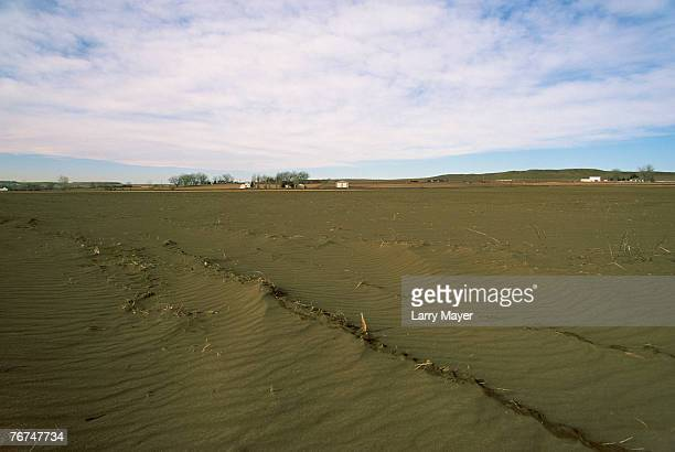 wind erosion in farm field - soil erosion stock photos and pictures