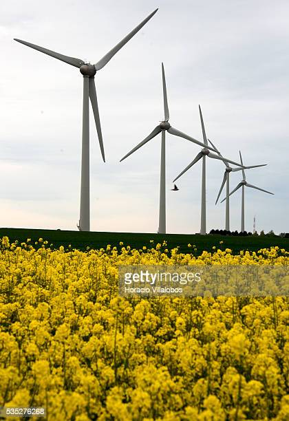 Wind Farm along route D925 near SaintValeryenCaux in the SeineMaritime department in the HauteNormandie region northern France 29 May 2013 France has...