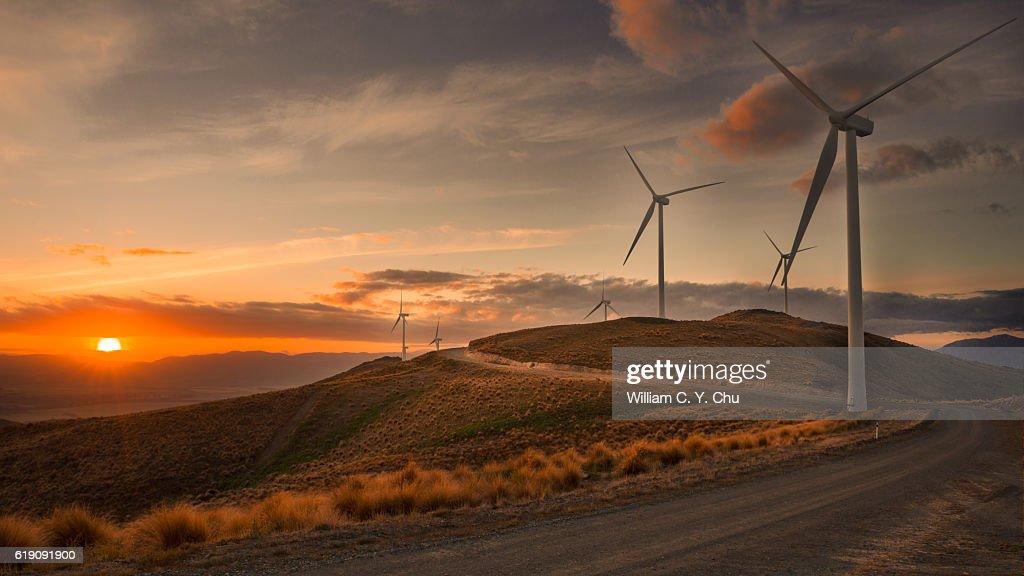 Wind Farm at New Zealand : Stock Photo