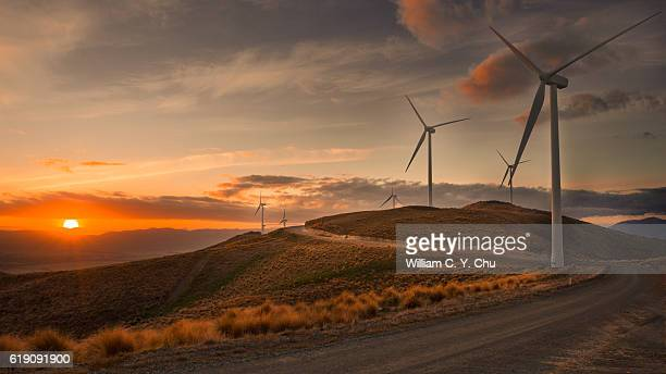wind farm at new zealand - old windmill stock photos and pictures