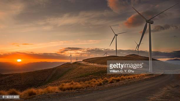 wind farm at new zealand - turbina a vento foto e immagini stock