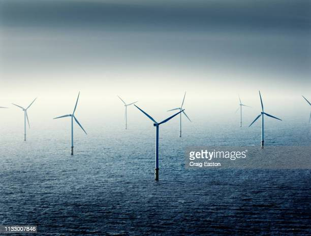 wind farm at sea - wind power stock pictures, royalty-free photos & images