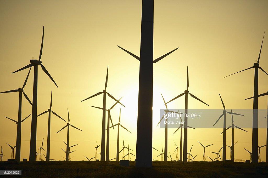Wind Farm at Sunset : Stock Photo
