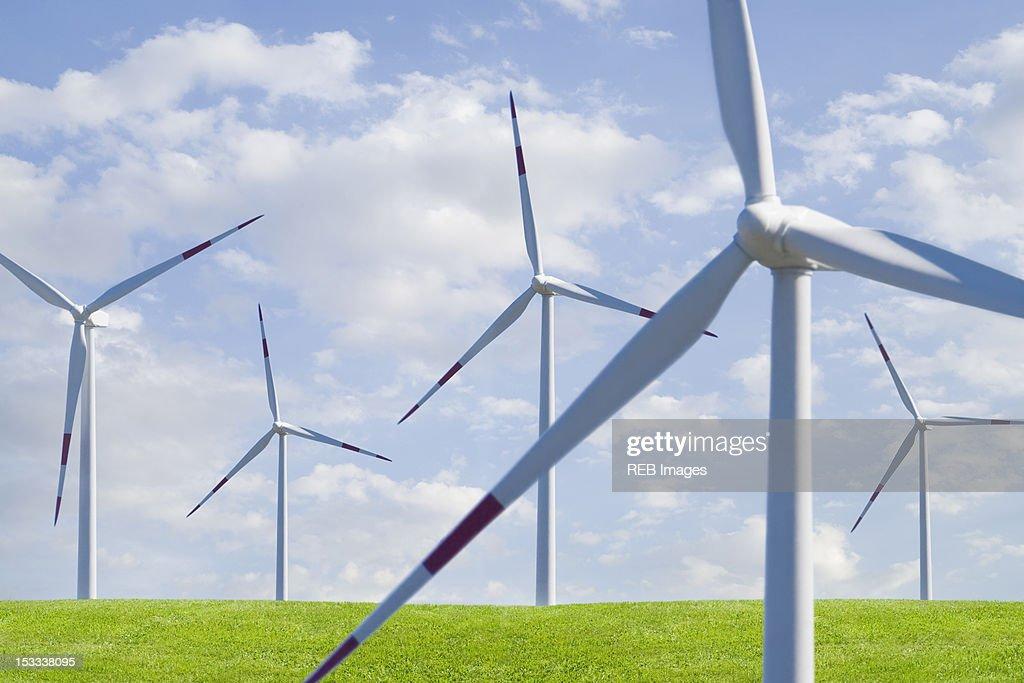 Wind farm in field : Stock Photo