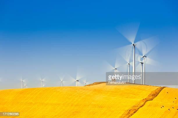 Wind farm long exposure