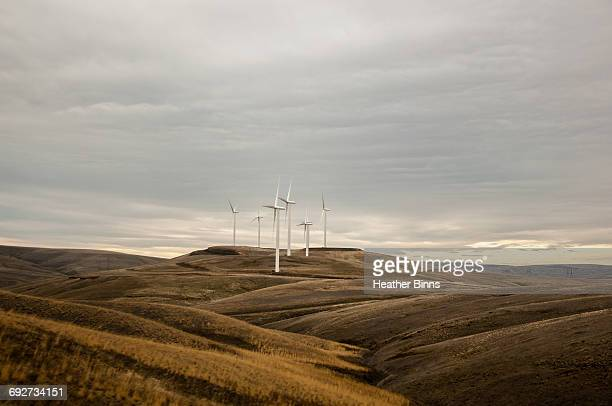 wind farm on rolling landscape, condon, oregon, usa - condon stock photos and pictures