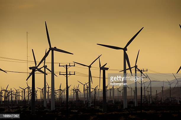 Wind Farm, Palm Springs