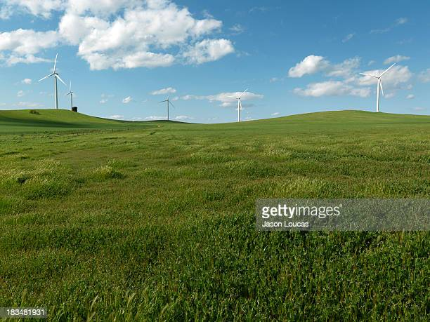 wind farm - american style windmill stock pictures, royalty-free photos & images