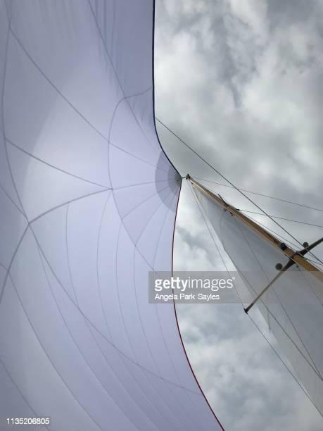 wind in the sails - tuig mast stockfoto's en -beelden