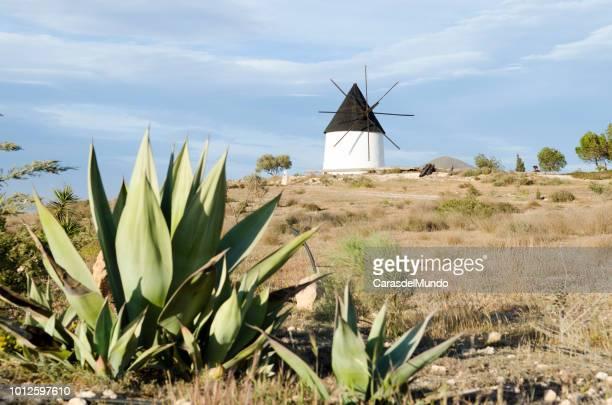 Wind mill at Cabo de Gata.