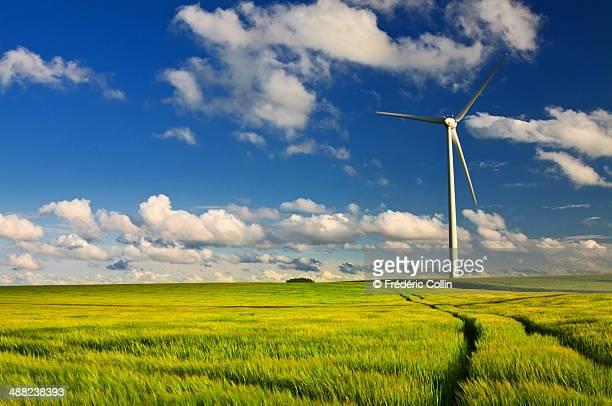 Wind mill in a green-yellow wheat field