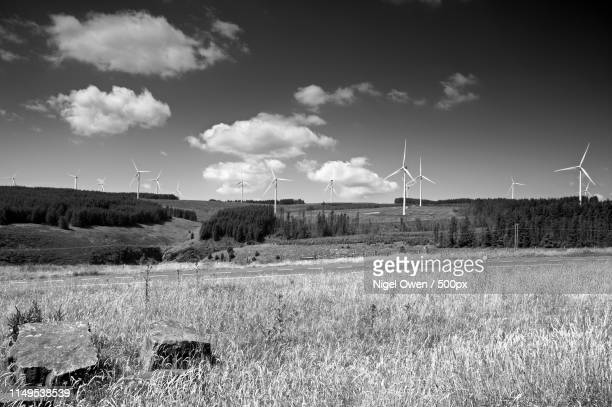 wind power - nigel owen stock pictures, royalty-free photos & images