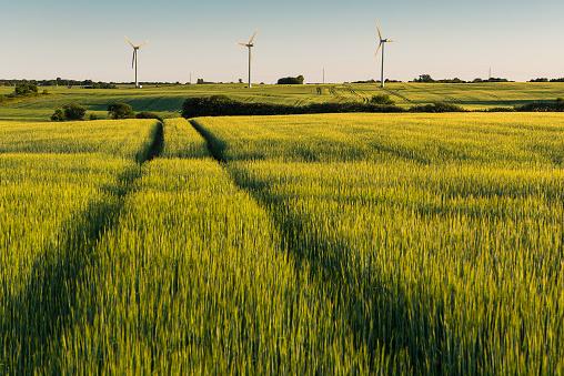 Wind Power - gettyimageskorea