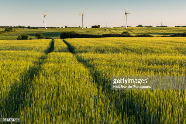 wind power - denmark stock pictures, royalty-free photos & images