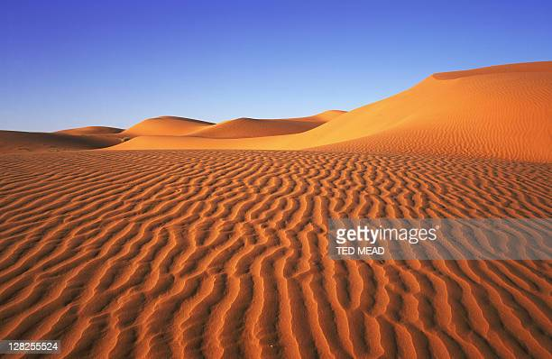 wind rippled sand dunes - 砂丘 ストックフォトと画像