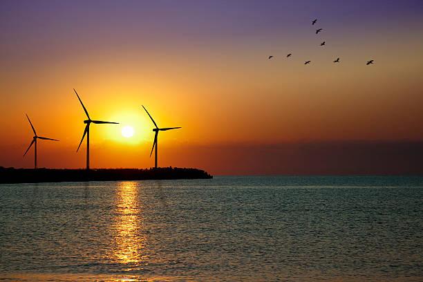Wind Turbine Farm In Sunset Wall Art