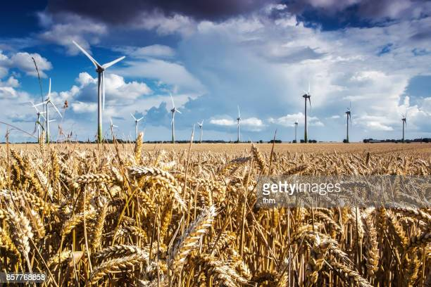 wind turbine in an agricultural plant - climate stock pictures, royalty-free photos & images