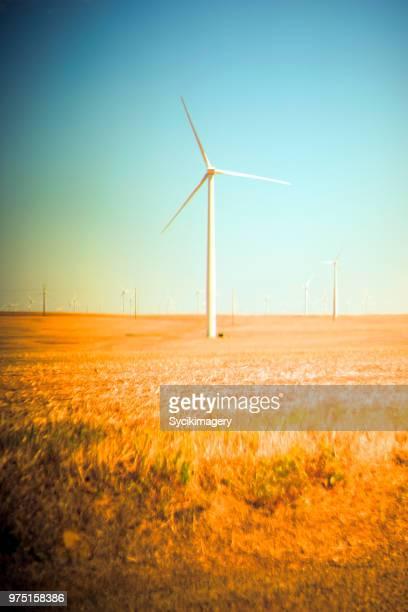 Wind turbine in golden field