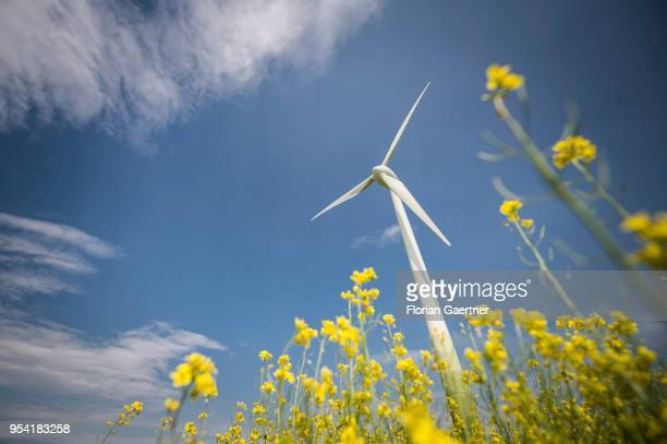 A wind turbine is pictured on April 30 2018 in Schoepstal Germany