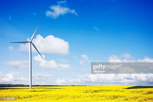 Wind turbine Landschaft