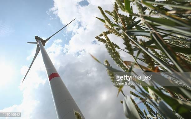 MW wind turbine of German alternative energy producer Energiequelle GmbH spins in a field of wheat on June 20 2011 near Feldheim Germany Feldheim...