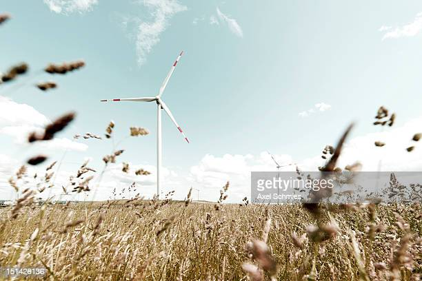 wind turbine - wind stock-fotos und bilder