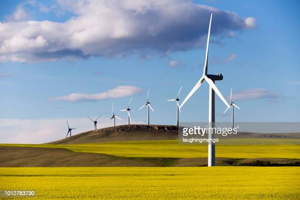 wind turbine-elektriciteitsproductie - windenergie stockfoto's en -beelden