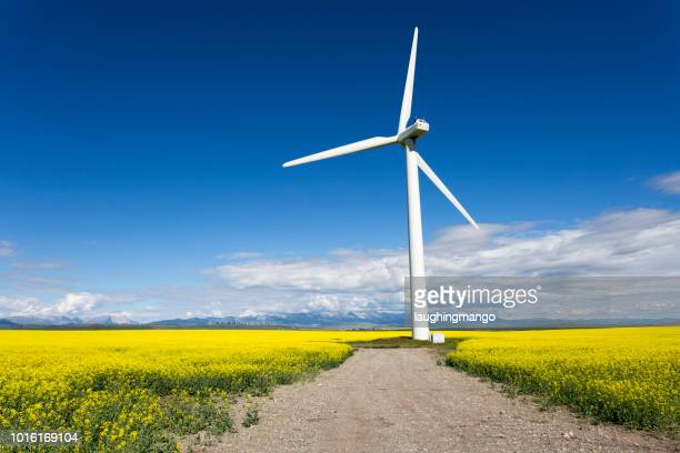 wind turbine renewable energy - canadian prairies stock photos and pictures