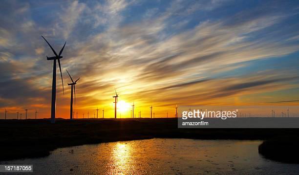 Windturbinen gegen Blau, Gelb und orange Sonnenuntergang mit Wasser