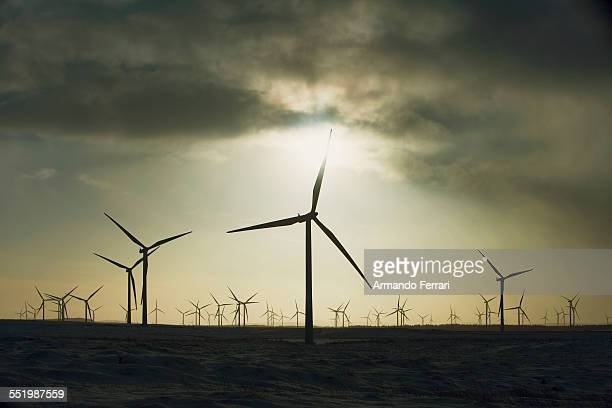 Wind turbines against overcast sky, Ayrshire, Scotland
