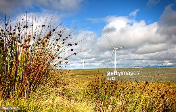 Wind turbines against white clouds blue sky