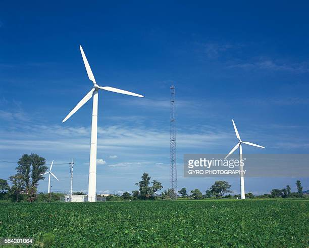 Wind Turbines and Fields