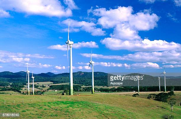 Wind turbines and rain forested slopes of the Atherton Tableland beyond. Windy Hill Wind Farm is Queensland's largest, with 20 turbines. Windy Hill...