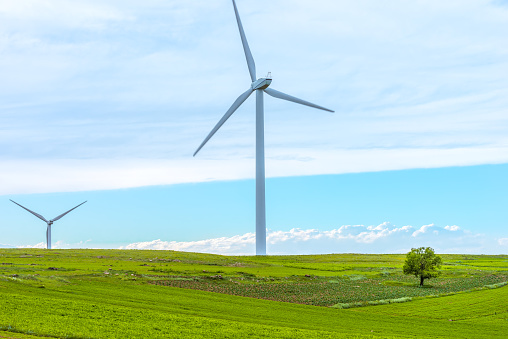 Wind Turbines And Tree - gettyimageskorea