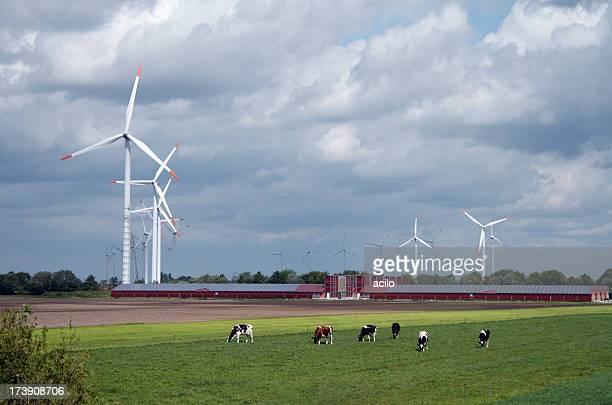 Wind turbines behind a modern farm with solar panels