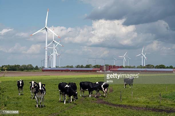 風力タービンの後ろには、モダンなファーム、ソーラーパネル