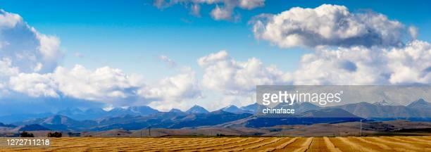 青空に対する収穫されたフィールドの背後にある風力タービン - プレーリー ストックフォトと画像