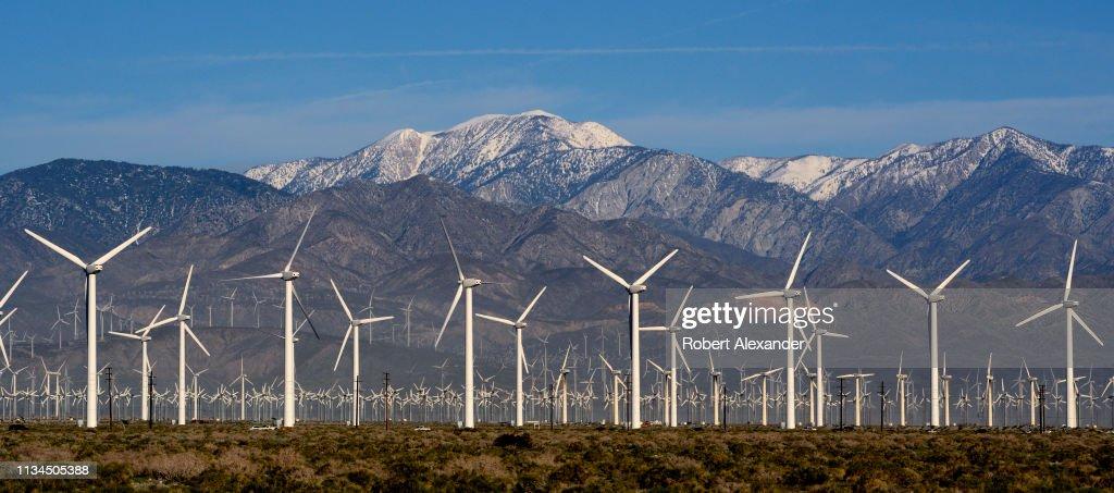 San Gorgonio Pass Wind Farm in Palm Springs, California : Nachrichtenfoto